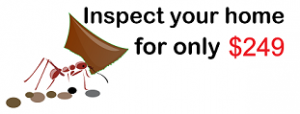 Best Pest Control Sydney Price