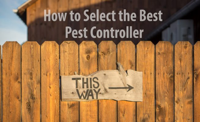 how to select the best pest controller - If you are using a pest service now, first confirm if the inspector has the required qualifications for Home Pest Control Sydney.